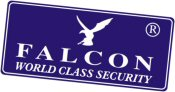 Falcon Security Logo
